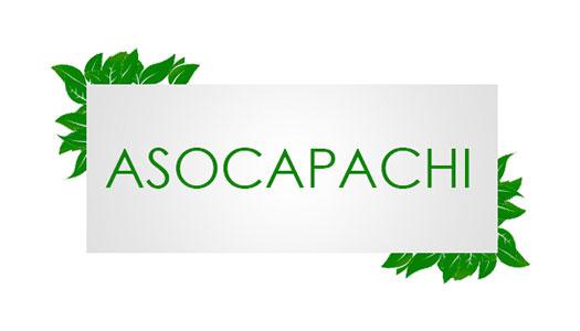 ASOCAPACHI Image
