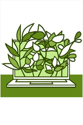 Concurso<br/> Construye Verde