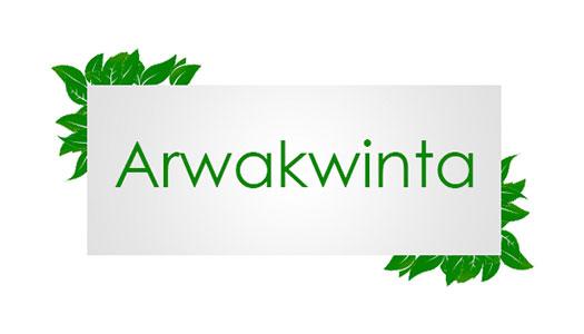 ARWA KWINTA Image